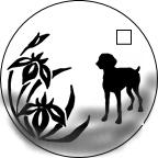 オーダーメイド犬用シルバーネックレス ワイマラナー×菖蒲の下絵